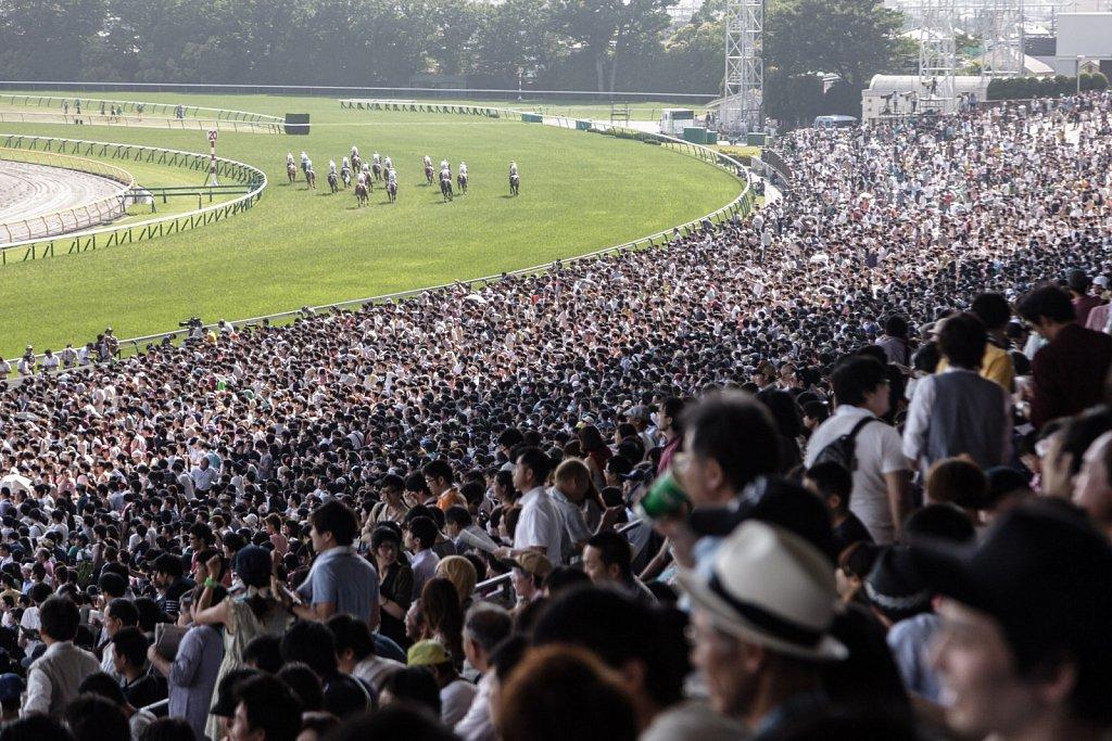 Nihon Derby